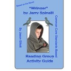 """Wringer"" By Jerry Spinelli Reading Group Activity guide"