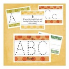 Write and Wipe Lowercase Letters Mini Book