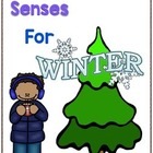 Writing Prompts For Winter Using the 5 Senses