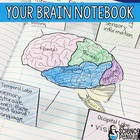 Your Brain: Free Student Notebook Activities About Learning