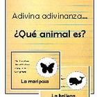 adivinanzas de animales vocabulario - animals riddles spanish
