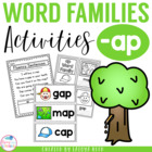 ap word family mini packet
