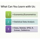 e-Learning AnEconomist Online Course Coupen