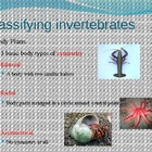 invertebrates presentation