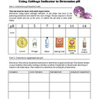 pH Student Lab Handout using Cabbage indicator