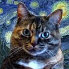 ArtsyCat