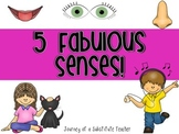 5 Senses Printables  Pack
