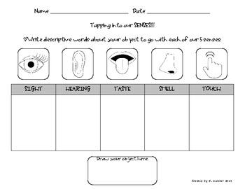Examples of descriptive essays using the five senses