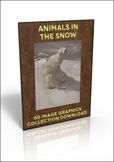 50 Animal in the Snow illustrations - great for Christmas