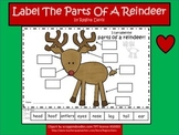 A+ Reindeer: Label The Parts Of A Reindeer