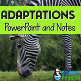 Adaptations PowerPoint and Notes