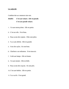 Adjectifs (French adjectives) position before the noun worksheet