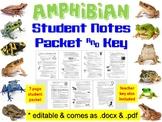 Amphibian Notes Handout, Review Worksheet, & Teacher Keys
