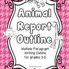 Animal Writing Report Outline