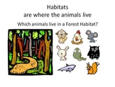 Animal and Their Habitats