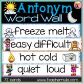 Antonym Word Wall - Illustrated
