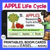 Apple Life Cycle Booklets and Posters