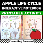 Apple Life Cycle