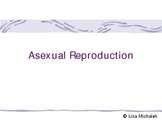 Asexual Reproduction PowerPoint Presentation Lesson Plan