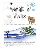 Bear Snores On - Animals in Winter