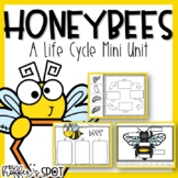 Bees Life Cycle {A Mini Unit}