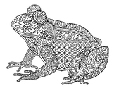 Black & White Detailed Frog Coloring Sheet