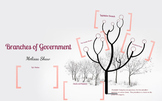 Branches of Government Prezi Lesson