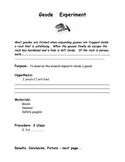 Breaking A Geode Experiment and Handout Worksheet