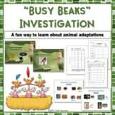 "Animal Adaptations ""Busy Beaks"" Fun Hands On Investigation"