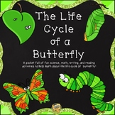 Butterfly Life Cycle - Grades K-3
