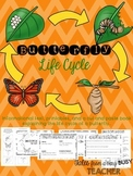 Butterfly Life Cycle {Informational Text, Printables, Cut