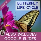 Butterfly Lifecycle Unit for Special Education