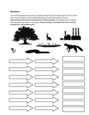 Carbon Cycle Lesson