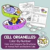 Cell Organelles - Cell Comparison - Coloring Activity for