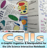 Cells Graphic Organizer and Manipulative for Interactive N