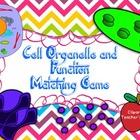 Cell Organelle & Function Memory Matching Game