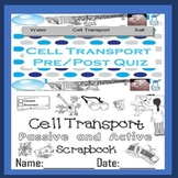 Cell Transport Quiz for Special Needs Education English La