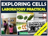 Cells: Museum Walkthrough Practical