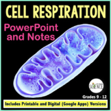 Cellular Respiration PowerPoint and Notes for Teacher and Student