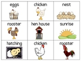 Chicken Egg Hatching Picture Cards for  Vocabulary--ESL