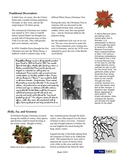 Christmas Tree Scavenger Hunt Information Text Pack