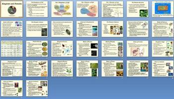 Classification Kingdoms Unit Bundle - 15 Files