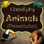 Classifying Animals {Presentation}