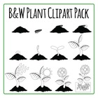 Clipart: Growing Plant Commercial Use Clip Art Pack - black and white lineart