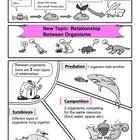 Standard-Based Comic: Symbiosis (Under the Ecology Unit)
