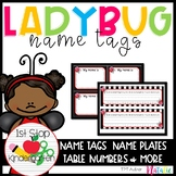 Cute Ladybug Theme Editable Nameplates & Name Tags Set
