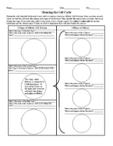 Drawing the Cell Cycle Worksheet