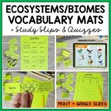 Ecosystems Vocabulary Match up Mat--definition study strategy