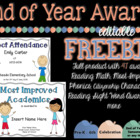 End of Year Awards Certificates {EDITABLE} FREEBIE