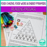 Energy to Live: Food Chains, Food Webs, and Energy Pyramid